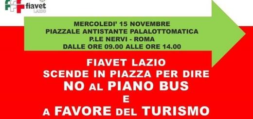 Manifestazione bus 15 novembre